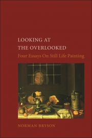 Jacket Image For Looking at the Overlooked