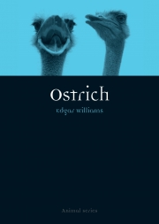 Jacket Image For Ostrich
