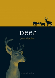 Jacket Image For Deer