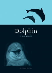 Jacket Image For Dolphin
