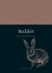 Jacket Image For Rabbit