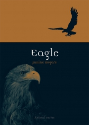 Jacket Image For Eagle
