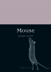 Jacket Image For Mouse