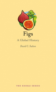 Jacket Image For Figs
