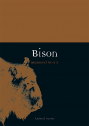 Jacket Image For Bison