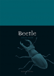 Jacket Image For Beetle
