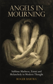 Jacket Image For Angels in Mourning