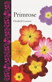 Jacket Image For Primrose