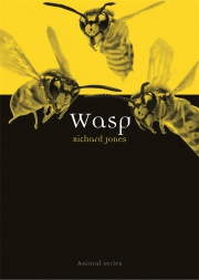 Jacket Image For Wasp