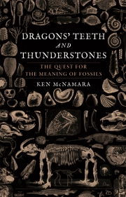 Jacket Image For Dragons' Teeth and Thunderstones
