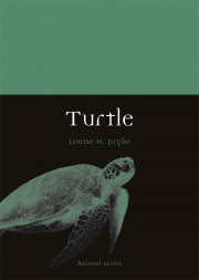 Jacket Image For Turtle