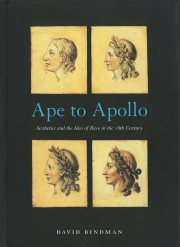 Jacket Image For Ape to Apollo