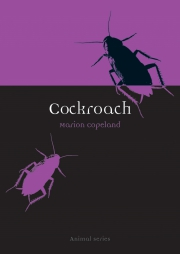 Jacket Image For Cockroach