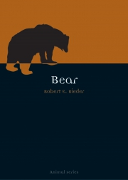 Jacket Image For Bear