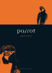 Jacket Image For Parrot