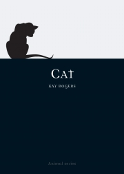 Jacket Image For Cat