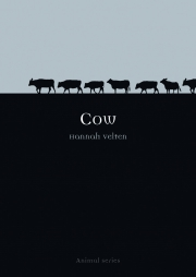 Jacket Image For Cow