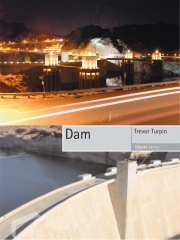 Jacket Image For Dam