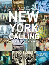 Jacket Image For New York Calling