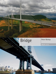 Jacket Image For Bridge