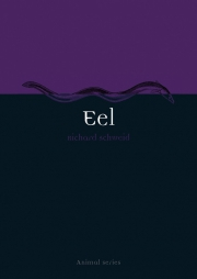 Jacket Image For Eel