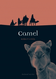 Jacket Image For Camel
