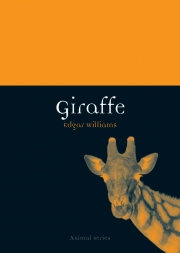 Jacket Image For Giraffe