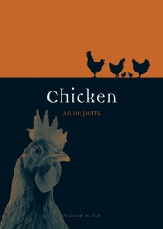 Jacket Image For Chicken