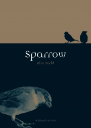 Jacket Image For Sparrow